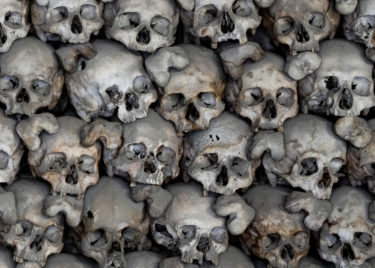 Human Skulls 1000 Piece Jigsaw Puzzle Image